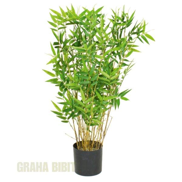 bambu kuning hias