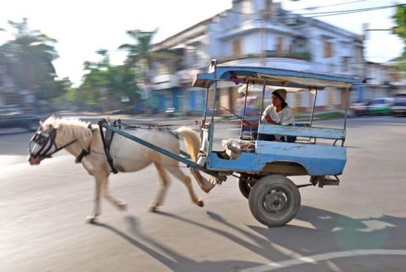 transportasi tradisional cidomo