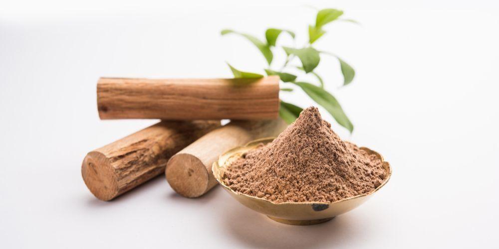 Mengenal Lebih Dalam Tanaman Herbal Kayu Manis